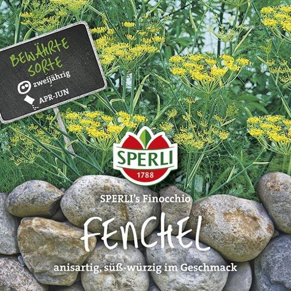 Fenchel SPERLI's Finocchio Bild 1