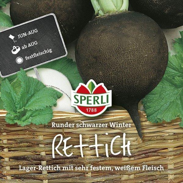 Rettich Runder Schwarzer Winter Bild 1