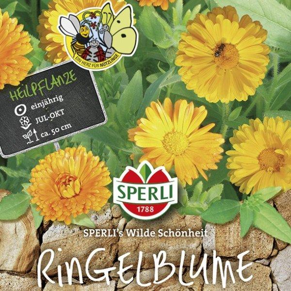 Ringelblume SPERLI's Wilde Schönheit Bild 1