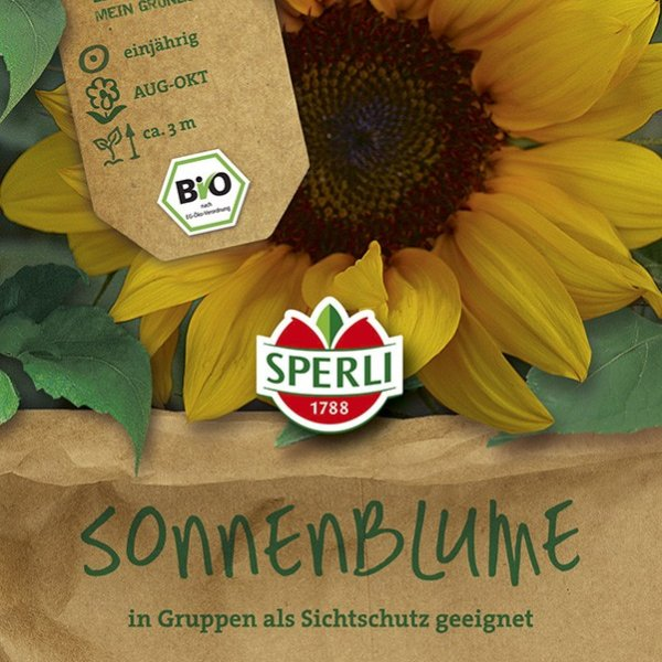 Sonnenblume - Bio-Saatgut Bild 1