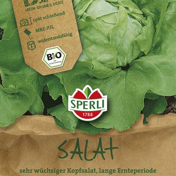 Kopfsalat - Bio-Saatgut Bild 1