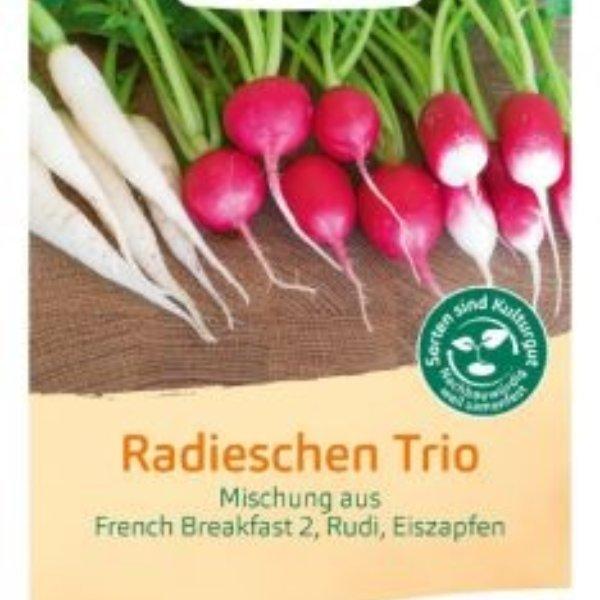 Radieschen Trio - French Breakfast 2, Rudi, Eiszapfen Bild 1