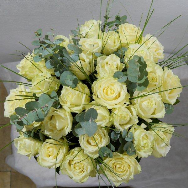 Premium Rose Amelie creme XL Bild 1