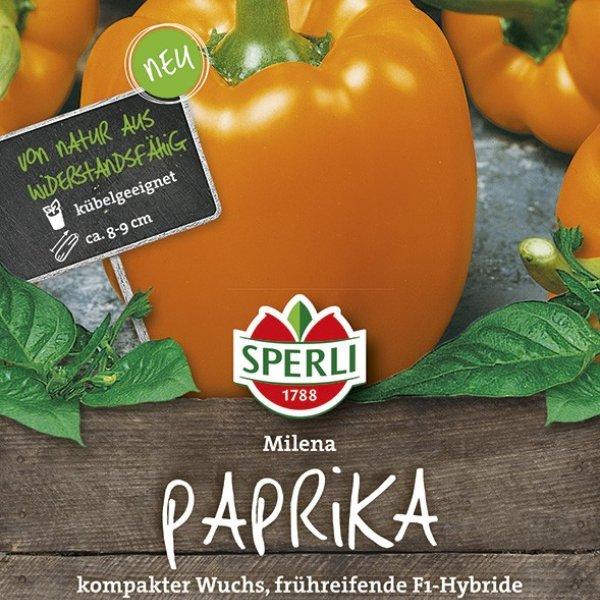Paprika Milena F1 Gelb-Orange Bild 1