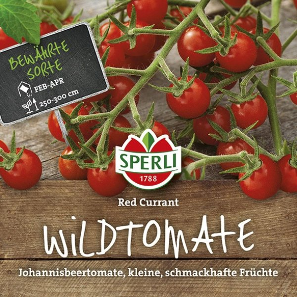 Cherry-Tomate Red Currant Bild 1