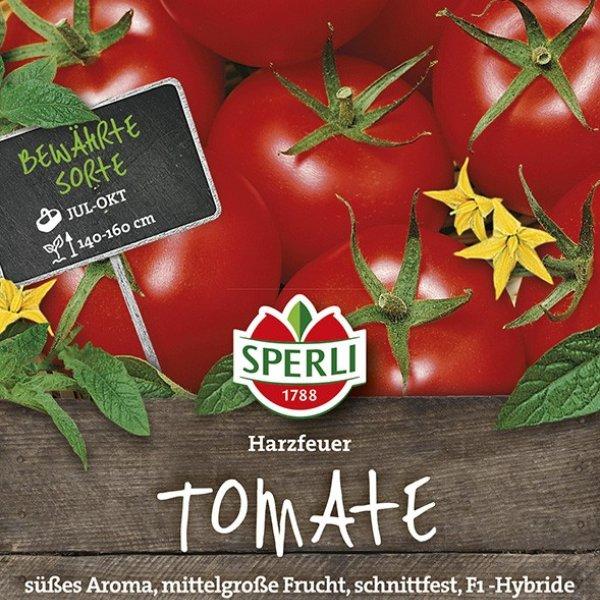 Tomaten Harzfeuer, F1 Bild 1