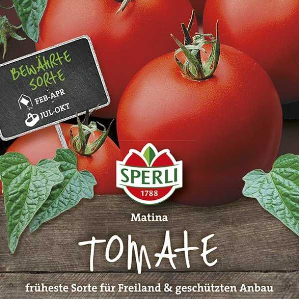 Tomaten Matina Bild 1