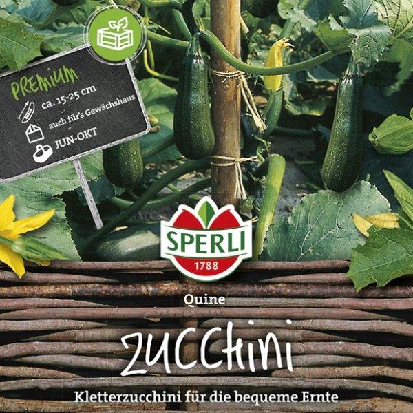 Zucchini Quine Bild 1