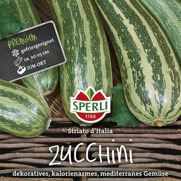 Zucchini Striato d'Italia Bild 1