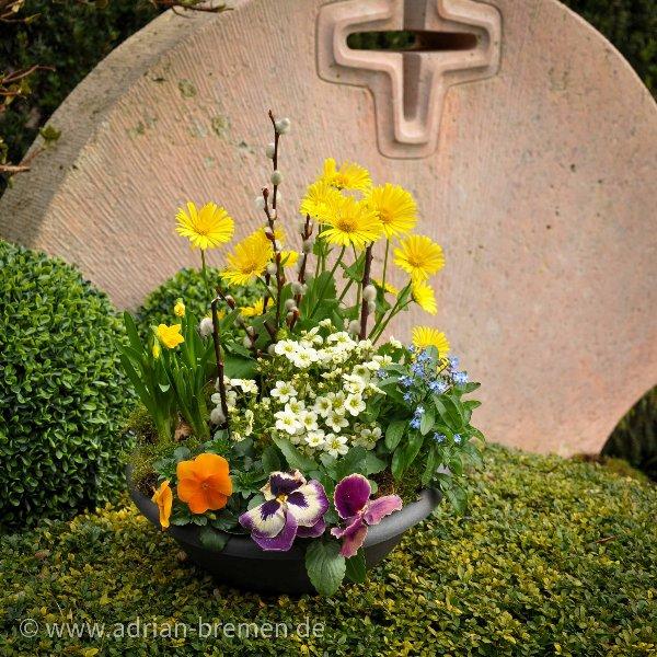 Bunte Frühlingsschale 1 Bild 1