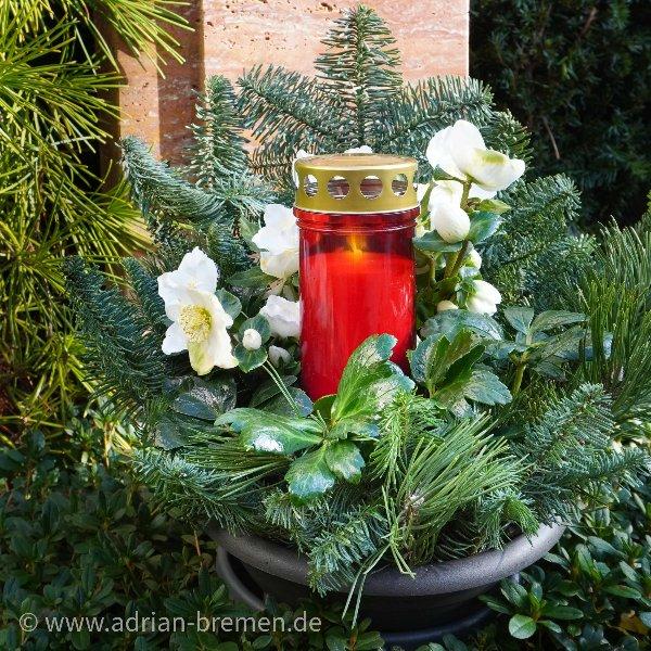 Christrosen-Schale mit Kerze Bild 1