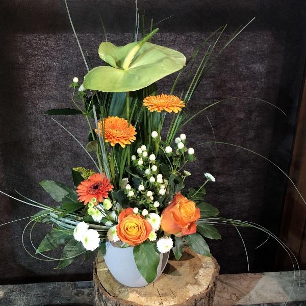 Blumen-Arrangement im Topf Bild 1