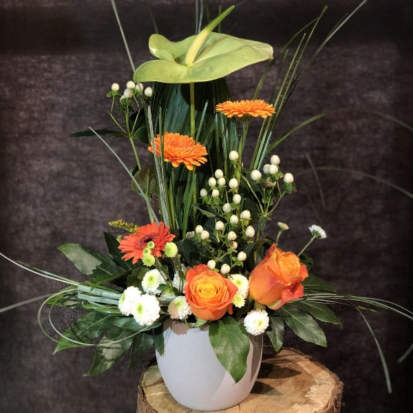 Blumen-Arrangement im Topf Bild 3