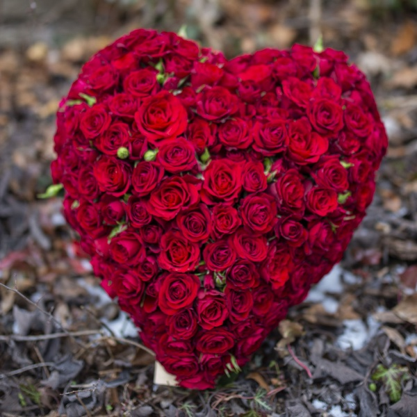 Tiefe Liebe Bild 1