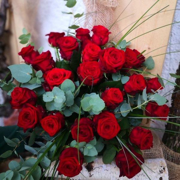 Premium Rose Red Naomi XL Bild 1
