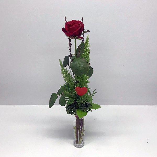 Rote Liebe Bild 1