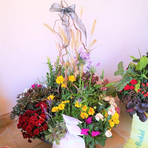 Trauerschalen saisonal bepflanzt Bild 5