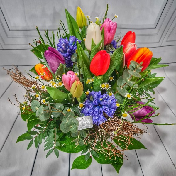 Frühlingsbote Bild 1