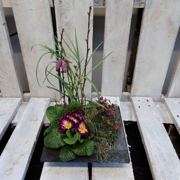 Pflanzschale für die Grabstätte Bild 1