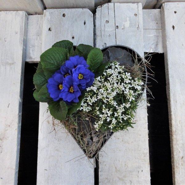 Pflanzschale für die Grabstätte Herzform Bild 1