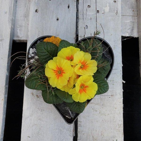 Pflanzschale für die Grabstätte Herzform Bild 2