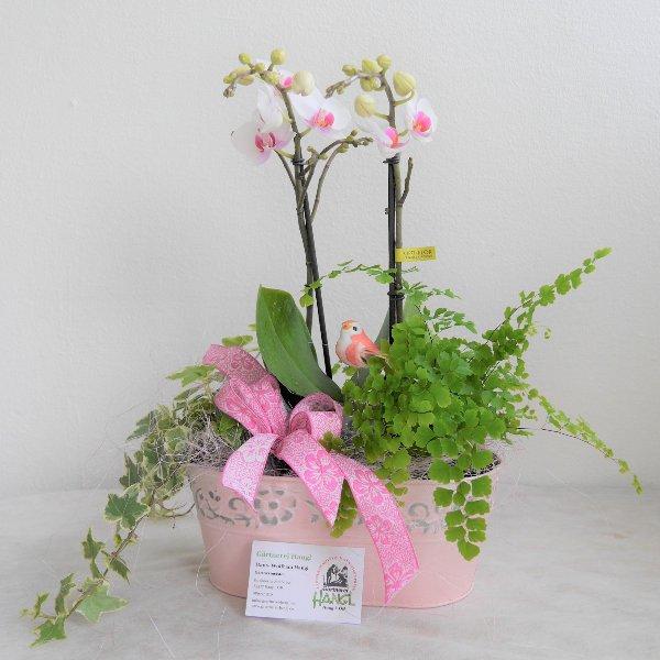 Orchideenschale Bild 1