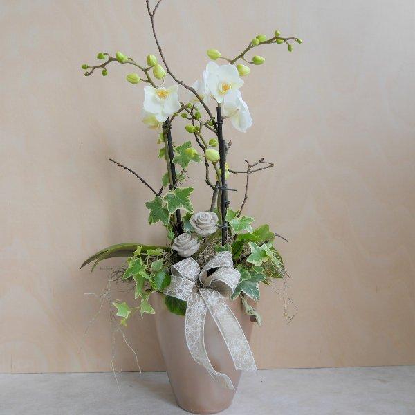 Orchidee mit Steinrosen Bild 1