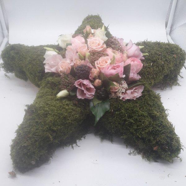 Blumenstern mit Waldmoos Bild 1