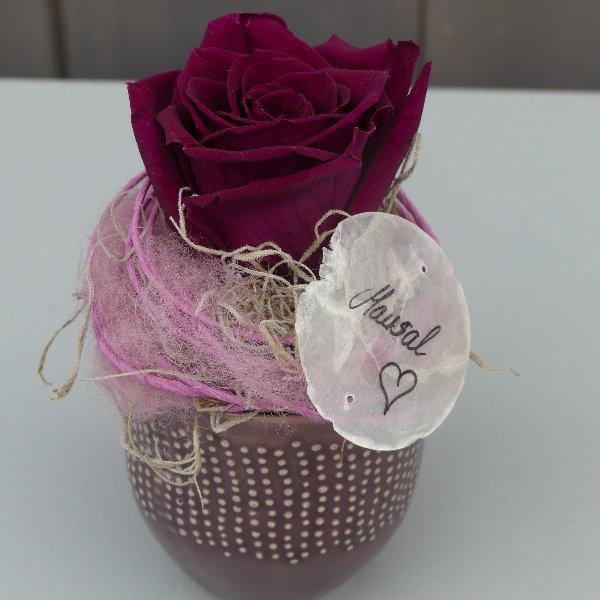 Mausal (Glycerinrose. Haltbar gemachte Rose - ohne Wasser min. 6 Monate schön!) Bild 1