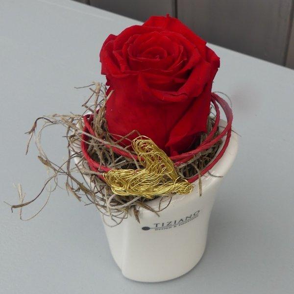 Liebling (Glycerinrose. Diese Rose ist ohne Wasser mindestens 6 Monate haltbar und schön!) Bild 1