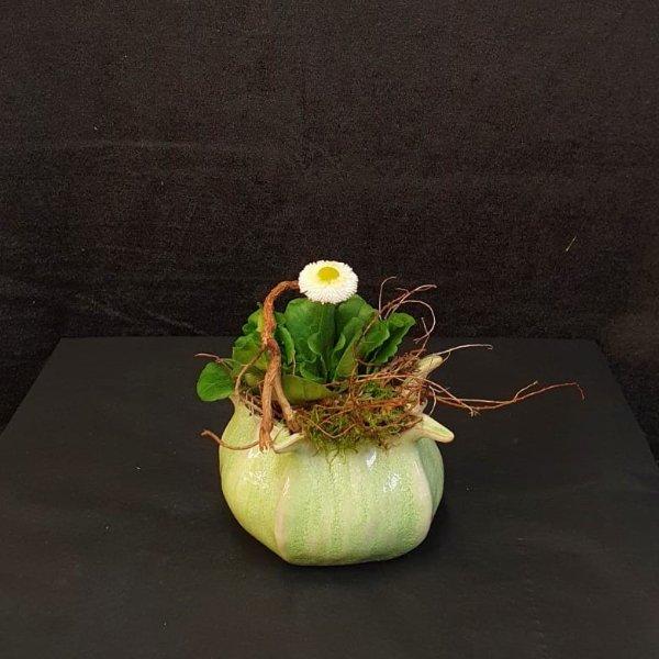 Frühlingsblüher im Keramikgefäß Bild 1