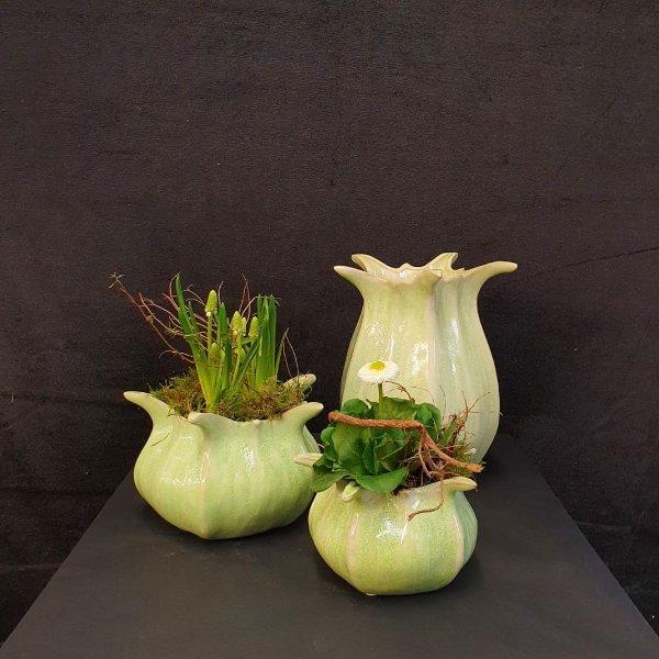 Frühlingsblüher im Keramikgefäß Bild 3