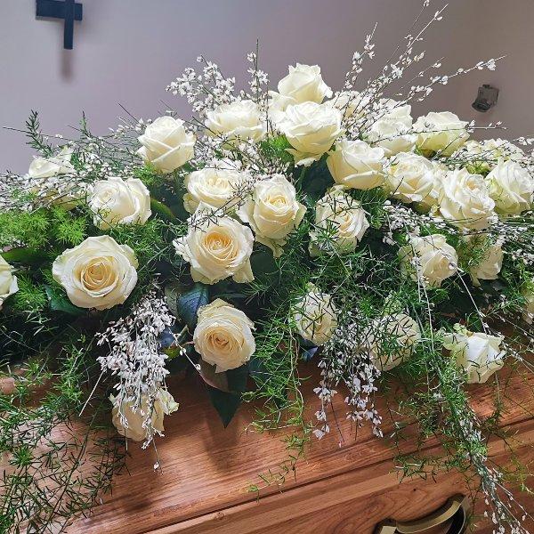 Weiße Rosen Bild 1