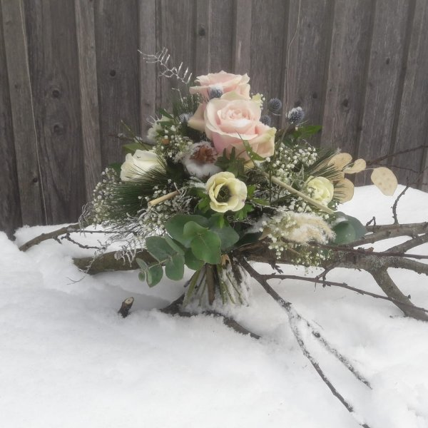 Winterprincess Bild 1