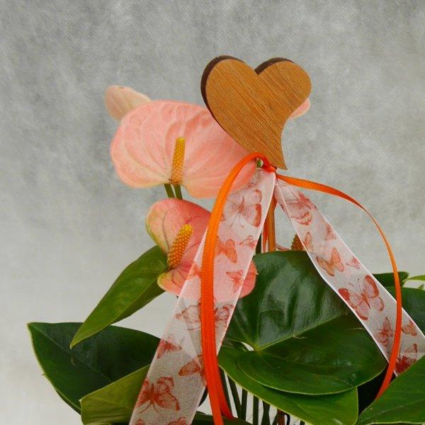 Valentinstags-Schälchen Betty Bild 2