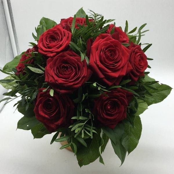 Eine Rose ist eine Rose ist eine Rose ... Bild 1