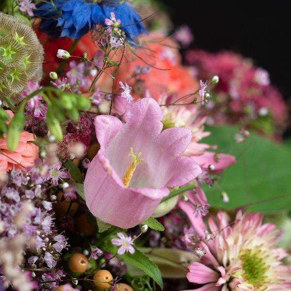 Blumenabo Bild 1