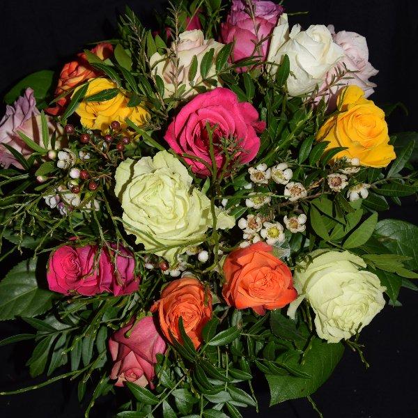 Bunte Rosenvielfalt Bild 2