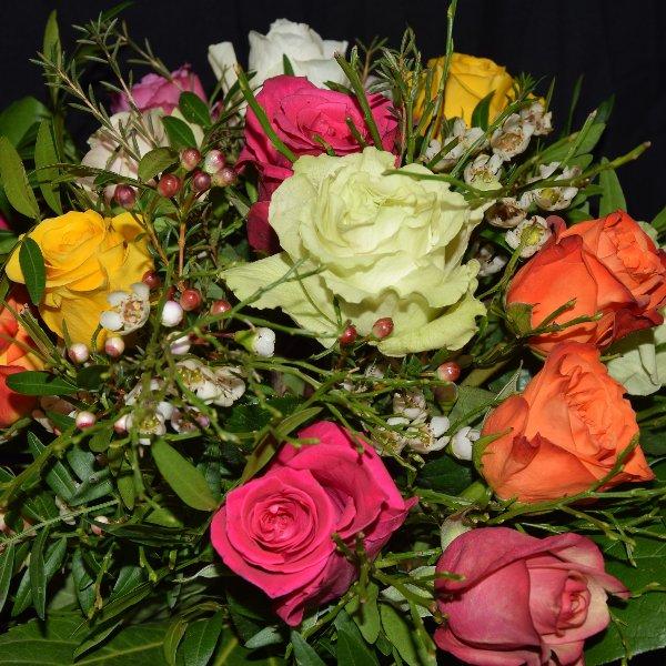 Bunte Rosenvielfalt Bild 3