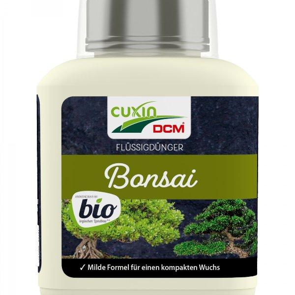 Bonsai BIO Bild 1