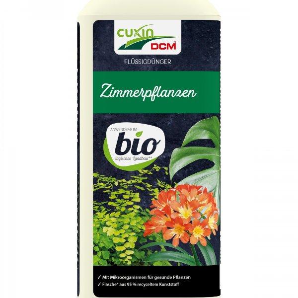 Zimmerpflanzen BIO Bild 1