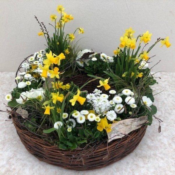 Korb Frühling Bild 1
