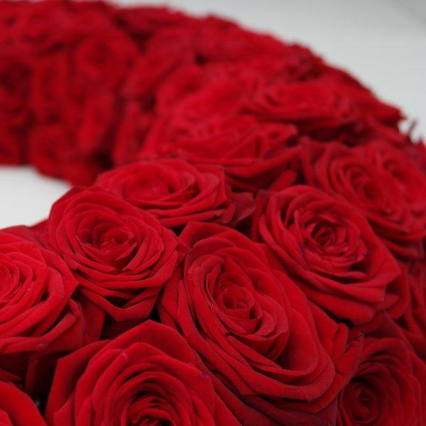Kraft der Farbe: Rot! Bild 2