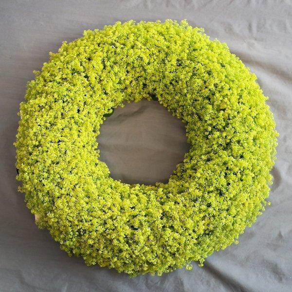 Die Kraft der Farbe: Grün! Bild 1