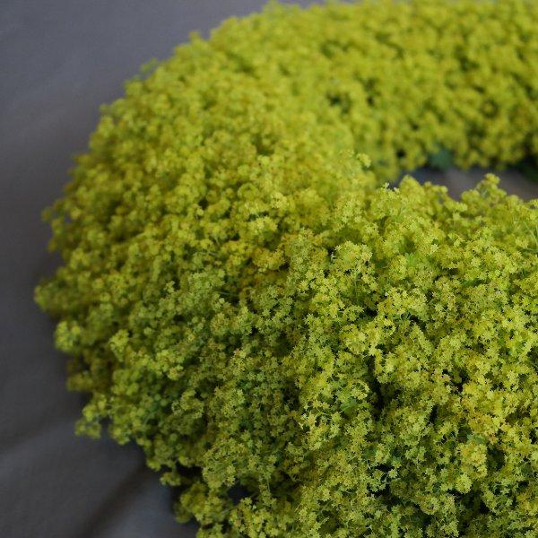 Die Kraft der Farbe: Grün! Bild 2