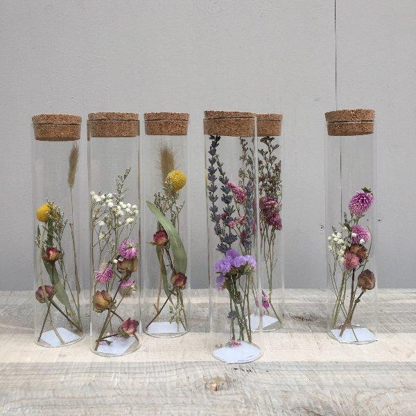 Trockenblumen im Glas Bild 2