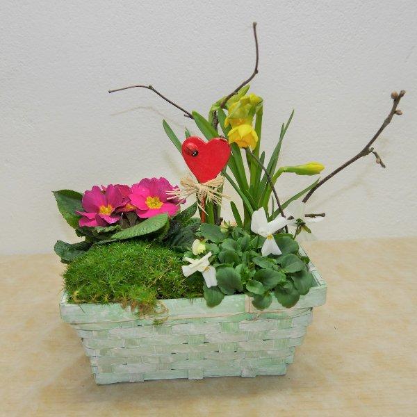 Frühlings- Schälchen Bild 1
