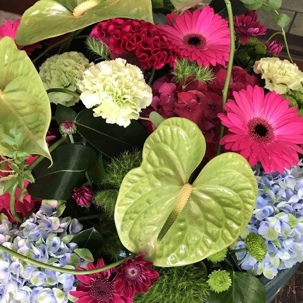 Blumen-Abo vierteljährlich Bild 1
