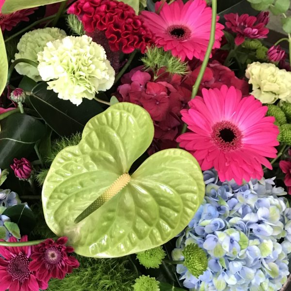 Blumen-Abo monatlich Bild 1