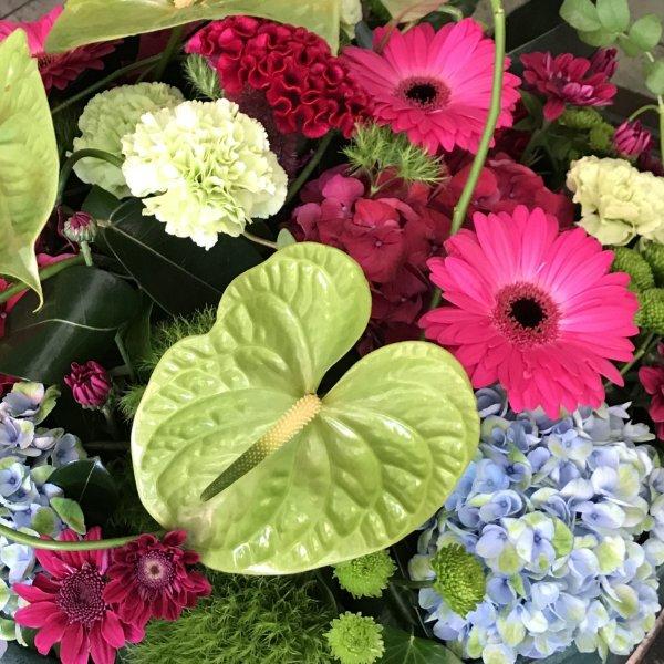 Blumen-Abo wöchentlich Bild 1